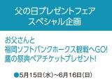 〈父の日プレゼントフェア スペシャル企画〉 お父さんと福岡ソフトバンクホークス観戦へGO! 鷹の祭典ペアチケットプレゼント!