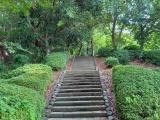 【女子ブログ】階段多めの負荷が高いコースを頑張って歩いてます!