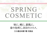 SPRING COSMETIC